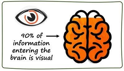 90 percent visual